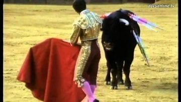 Bullfighting HD