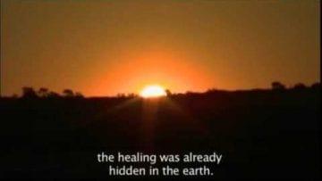 Bushmen – Healing power of nature
