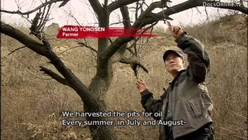 China Water Pollution and Shortage