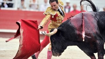 Documentary duende about flamenco culture and bull fighting